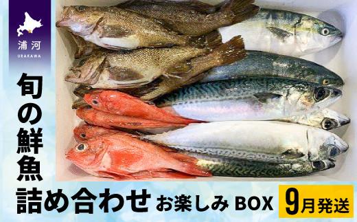鮮魚お楽しみBOX 旬の魚貝がたっぷり