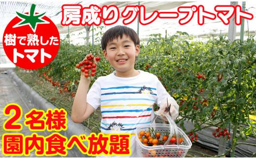 房成りグレープトマト(ミニトマト)食べ放題ペア券
