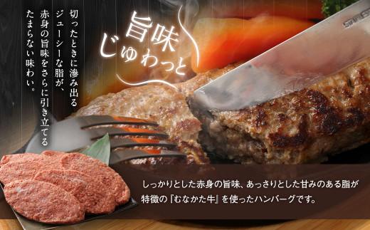 むなかた牛 ハンバーグ 150g×6個 セット 計900g_KA0139