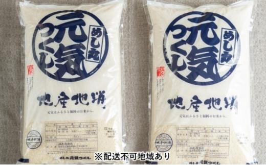 [№5656-1746]果物屋さんの元気つくし(米)5kg×2袋【配送不可:離島】