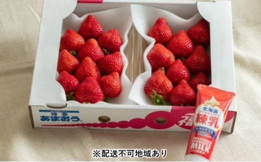 [№5656-1741]福岡産 あまおう 苺 2パック&練乳(コンデンスミルク)1個【配送不可:離島】