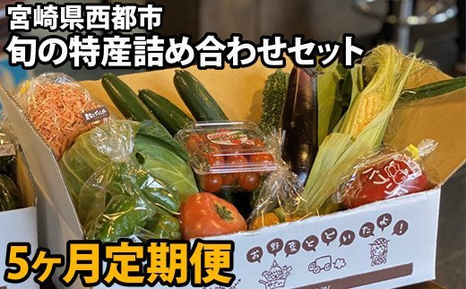 【先行予約・5ヶ月定期便】西都市旬の特産詰め合わせセット 野菜・スイートコーン等 <5-13>