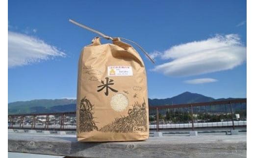 008-12秦野の米(さとじまん)