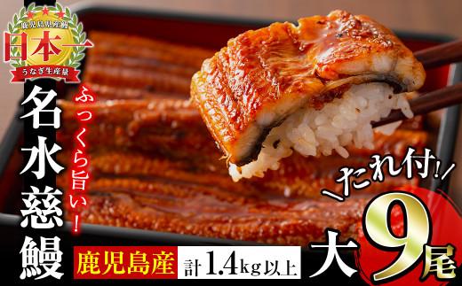 鹿児島県産うなぎ蒲焼名水慈鰻 大9尾
