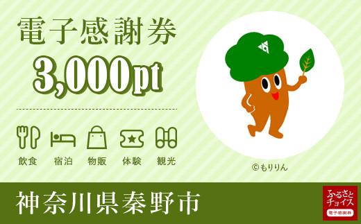 秦野市電子感謝券 3,000pt(1pt=1円)