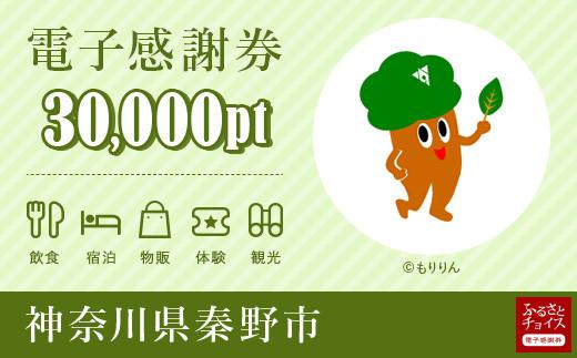 秦野市電子感謝券 30,000pt(1pt=1円)