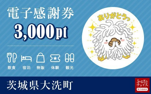 大洗町電子感謝券 3,000pt(1pt=1円)
