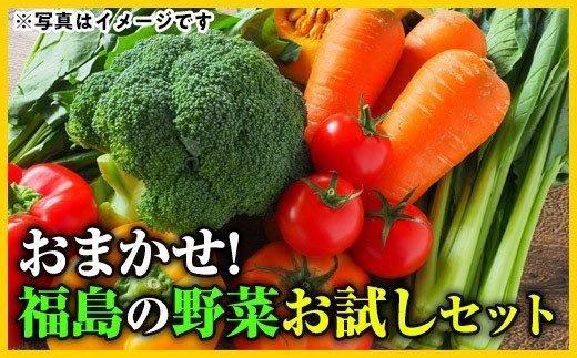 No.1351おまかせ!福島の野菜お試しセット