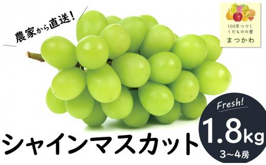 KK29-21A シャインマスカット【贈答用】 約1.8kg/2021年9月下旬~10月中旬頃配送