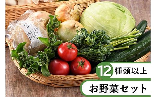 53-21_本日のお野菜セット(Lサイズ)