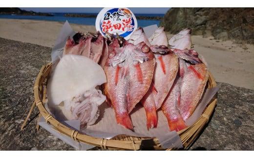 1405.しまね浜田の美味しいのどぐろ あじ カレイ 白いか 一夜干しセット