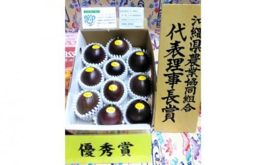 【2022年発送】<金賞受賞>小池さん家のパッションフルーツ約1kg