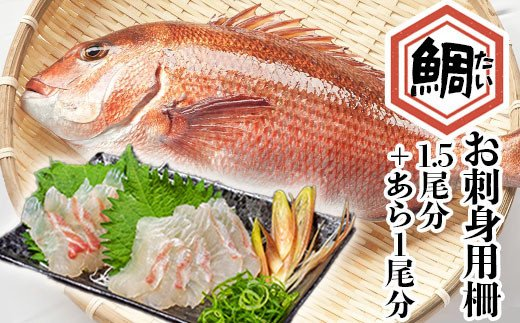 須崎市のブランド鯛「乙女鯛お刺身用柵1.5匹分」アラ1匹分付き KS021