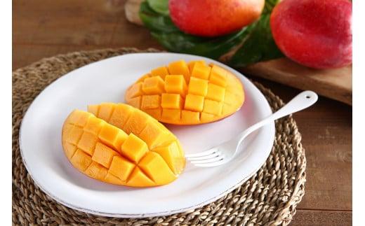 【糖度15度以上】無加温栽培『完熟マンゴー』1Kg 喜界島産