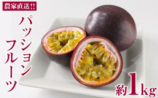 【2022年発送】農家直送!!パッションフルーツ 約1kg