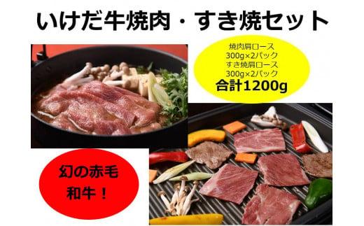 C011-3  いけだ牛焼肉・すき焼きセット(1.2kg)