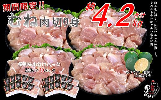 (1252)【流通割合1%未満!希少地鶏】合計約4.2kg 黒かしわ 鶏肉 むね肉 精肉 200g×20パック(長門ゆずきち付)