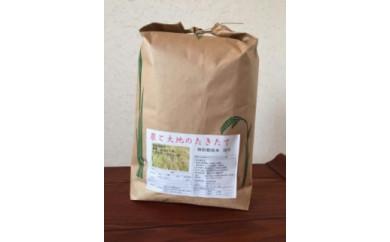 たきたて5㎏・宮城県認証農薬不使用米