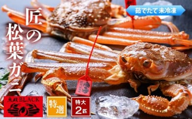 匠の松葉ガニ 魚政BLACK 茹で特撰特大サイズ 1300g級2匹セット(2022年1月~発送)