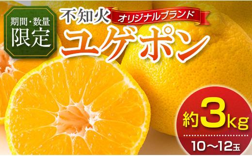 BA22-21 フルーツ≪先行予約≫不知火「ユゲポン」 オリジナルブランド果実(約3kg)【化粧箱入】