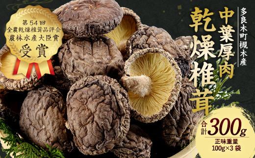 多良木町 槻木産 中葉厚肉 乾燥椎茸 3袋セット