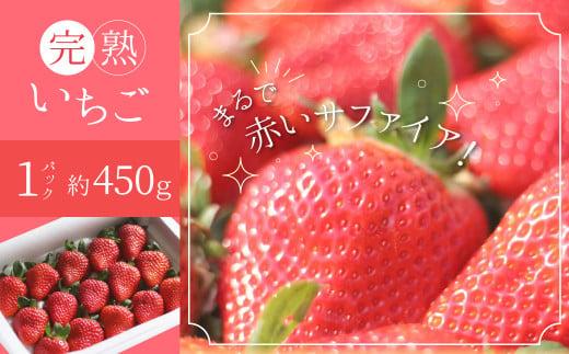 【12月以降順次発送】まるで赤いサファイア!!丹精込めた完熟いちご!! 約450g H130-001