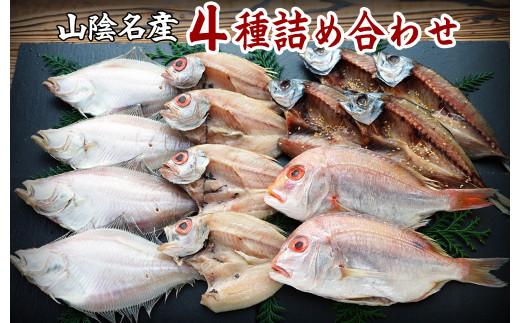 【21-025-012】山陰の干物 4種詰合-松