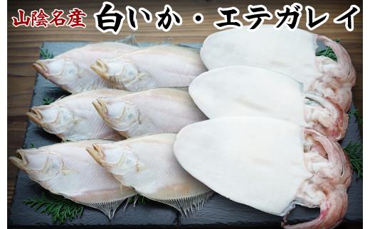 【21-020-016】白いか・エテガレイセット-竹
