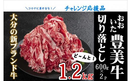 C-001 【チャレンジ応援品】おおいた豊美牛切り落とし1.2kg(600g×2P)