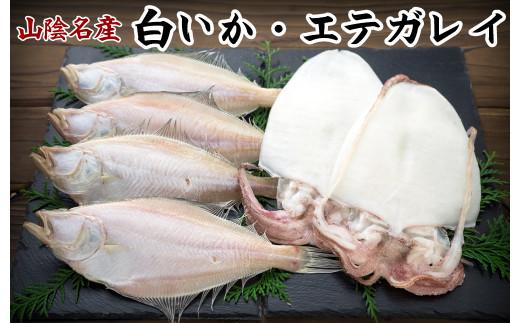 【21-015-021】白いか・エテガレイセット-梅