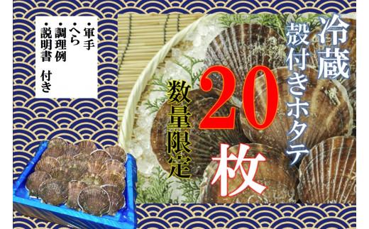 【期間限定】三陸産殻付きホタテ20枚(約3㎏) ホタテナイフ/レシピ付き