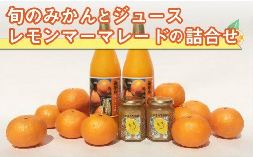 AA008-G旬のみかんとジュース・レモンマーマレードの詰合せ