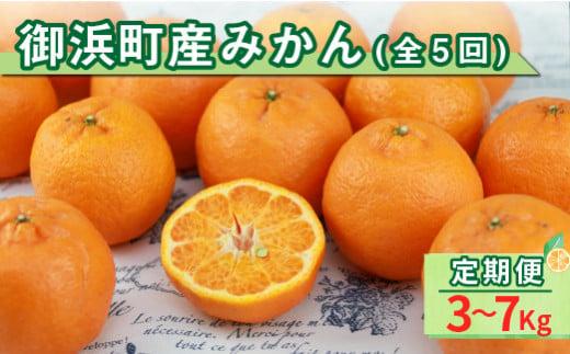 EA004-G御浜町産みかん(全5回)