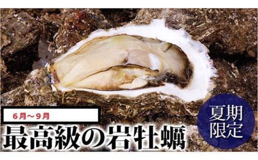 [5~7年の天然物]岩牡蠣1キロ