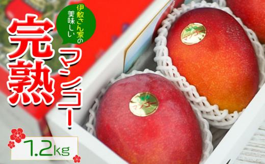 【2022年発送】伊敷さん家の美味しい完熟マンゴー1.2kg