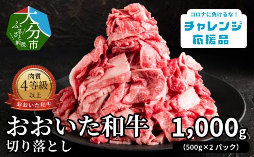 【A01109】【チャレンジ応援品】おおいた和牛 切り落とし 1.0㎏(500g×2パック)