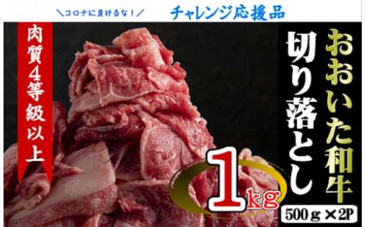 C-004 【チャレンジ応援品】おおいた和牛切り落とし1kg(500g×2P)