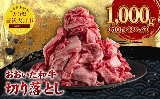 022-611 【チャレンジ応援品】おおいた和牛切り落とし 計1kg(500g×2パック) ブランド牛 4等級以上 国産 牛肉 豊後大野市