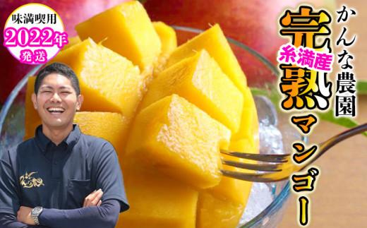 【2022年発送】<味満喫用>かんな農園の糸満産完熟マンゴー約2kg
