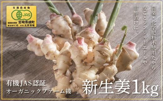 83-04_【有機JAS】 新生姜1kg  ◆甘酢漬けにぴったり!