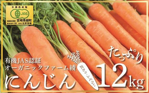 83-02_【有機JAS】 たっぷりにんじん12kg! (訳ありふぞろい規格)