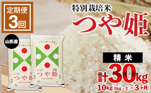 FY21-335 【定期便3回】山形産 特別栽培米 つや姫 10kg(5kg×2)×3ヶ月(計30kg)