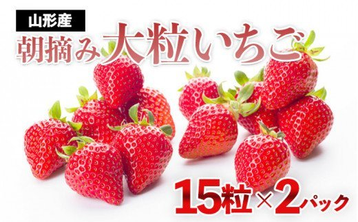 FY21-300 真っ赤に育った冬の贅沢!朝摘み大粒いちご☆(15粒×2パック)