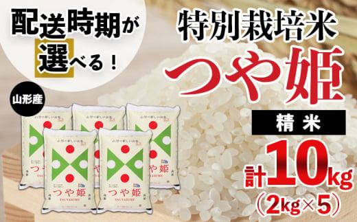 FY21-350 【配送時期が選べる】[令和3年産]山形産 特別栽培米 つや姫 10kg(2kg×5)