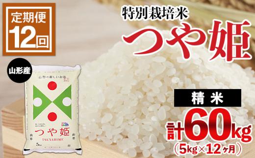 FY21-330 【定期便12回】山形産 特別栽培米 つや姫 5kg×12ヶ月(計60kg)