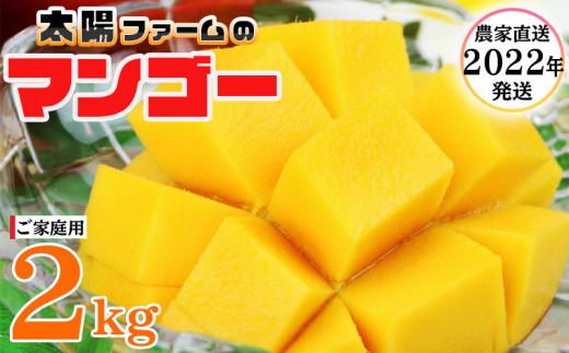 【2022年発送】農家直送!太陽ファームのマンゴー2kg(ご家庭用)