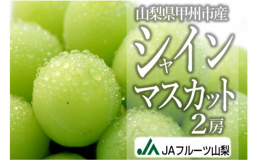 B2-102.JAフルーツ山梨シャインマスカット2房【80】