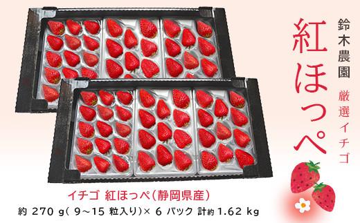 1059 イチゴ 紅ほっぺ(静岡県産)270g×6パック計1.6kg(3P入×2箱・計6Pでのお届け) 令和4年3月25日から順次発送 鈴木農園 (イチゴ 苺 いちご)