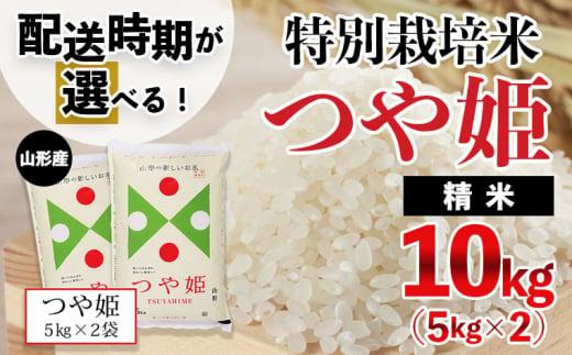 FY20-637 【配送時期が選べる】[令和3年産]山形産 特別栽培米 つや姫 10kg(5kg×2)