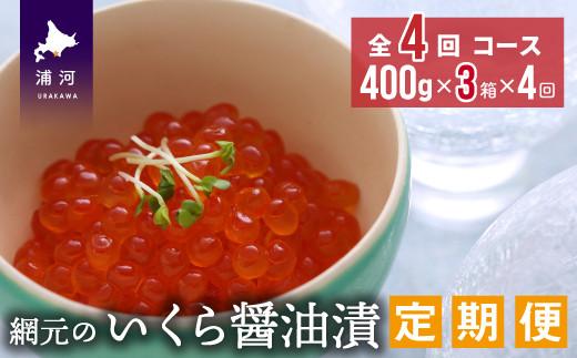 網元のいくら醤油漬(400gx3箱)【全4回定期便】[01-967]